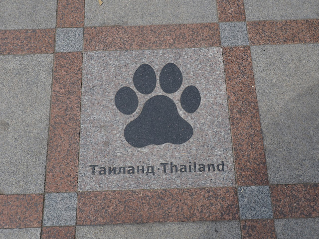 Россия, Владивосток - тигриная тропа (Russia, Vladivostok - tiger trail)