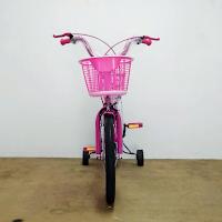 16 erminio 2402 ctb sepeda anak perempuan