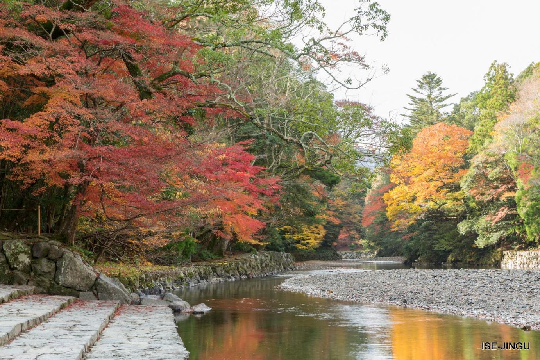 2017年日本紅葉最前線 - 花小錢去旅行