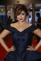 Payal Ghosh aka Harika in Dark Blue Deep Neck Sleeveless Gown at 64th Jio Filmfare Awards South 2017 ~  Exclusive 087.JPG