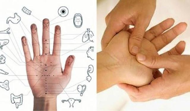 عالجوا أنفسكم من كثير من المراض  بـ5 دقائق فقط! إليكم هذه الطريقة الصينية.. كل إصبع في يدك من جسمكم يرتبط بعضوين!