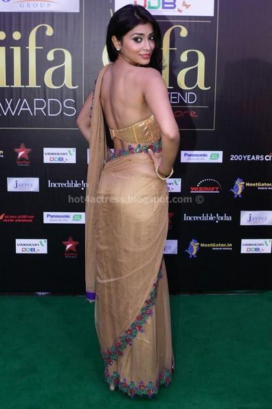 stylish Shriya saran  sexy in saree sexy photo