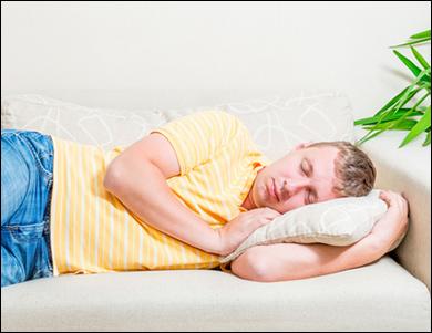 Bed Bug Exterminator Toronto