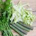 Videó – A moringa a cukorbetegség gyógyítója?