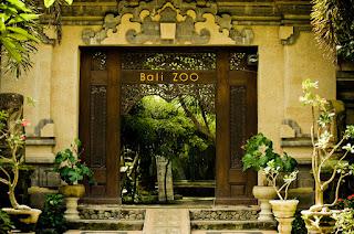 Inilah Tempat Wisata Keren Dekat Bali Zoo Park