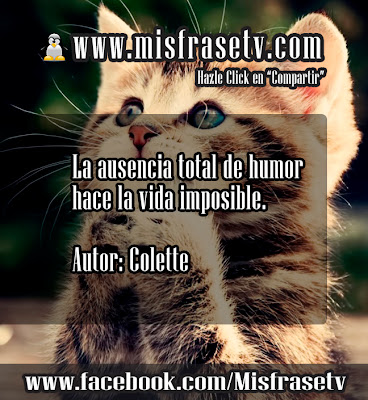 frases de humor y alegria para facebook y google taringa. Black Bedroom Furniture Sets. Home Design Ideas