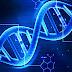 Sejarah Perkembangan dan Struktur DNA