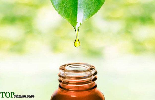 Cách điều trị mụn với 5 loại tinh dầu thiên nhiên cực hiệu quả