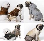 Beneficios de la ropa para perros