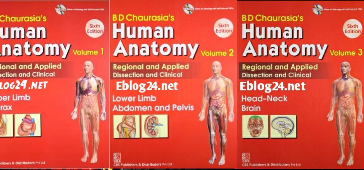 bd chaurasia upper limb pdf