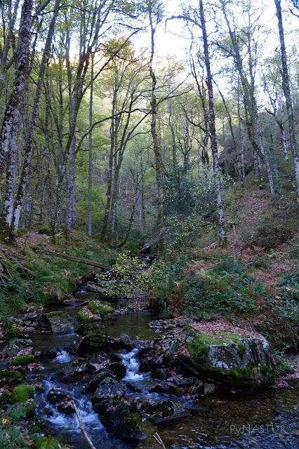 Río Ahío - Villanueva de Oscos