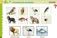 http://www.ceiploreto.es/sugerencias/A_1/Recursosdidacticos/SEGUNDO/datos/03_cmedio/03_Recursos/actividades/03/act1.htm