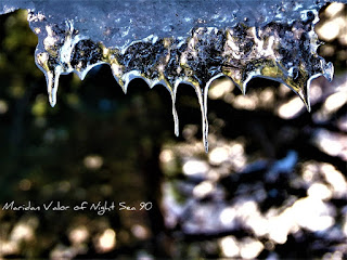 Photos of the new year; Icicles