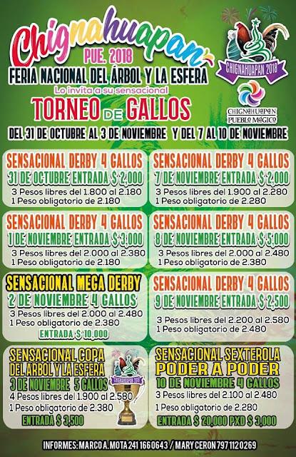 torneo de gallos feria chignahuapan 2018