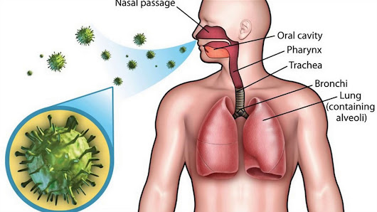 Beware of respiratory upper infection system : Here are symptoms, causes, treatment