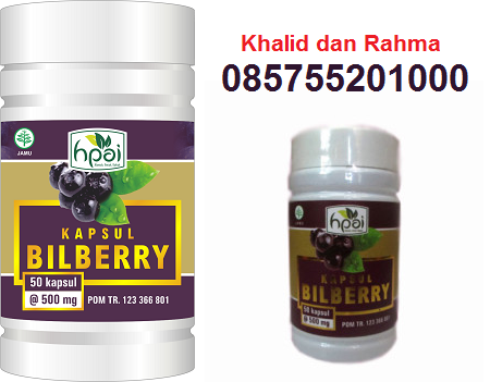 Kapsul Bilberry | HPAI | Jual | Murah | Grosir | Surabaya | Sidoarjo