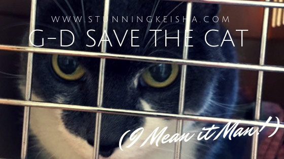 G-d Save the Cat (I Mean it Man!)