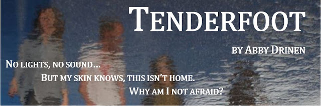 Tenderfoot by Abby Drinen  A Book review