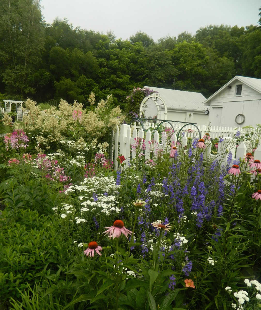 Pams English Cottage Garden Fall Planting In The Cottage Garden