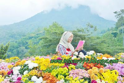 Download Power Point Bahasa Indonesia Kelas 7 (Penggunaan Kalimat yang Menggunakan Cerapan Pancaindra dalam Teks Deskripsi)