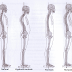 Posture Types. Why Low Back Pain