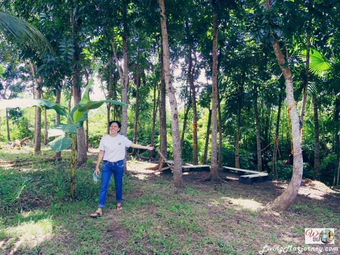 WomanInDigital-Kalikasan-Organic-Farm-Albay