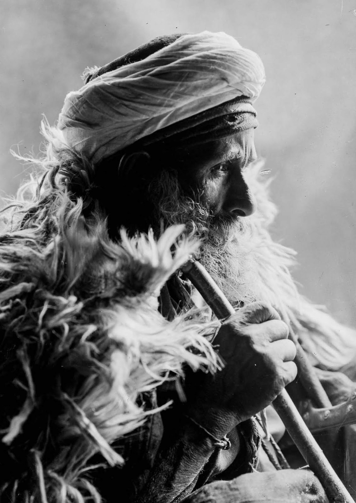 An elderly Bedouin man.