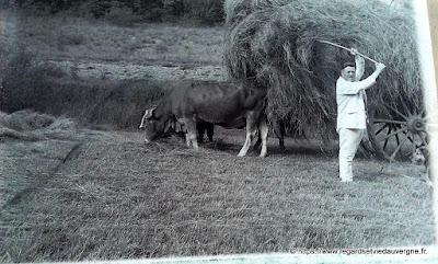 Photo ancienne noir et blanc Le char de foin