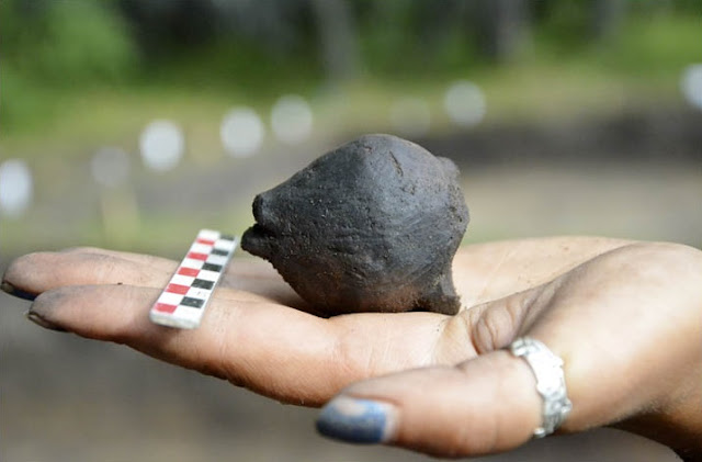 4,000 year old child's rattle found in Russia
