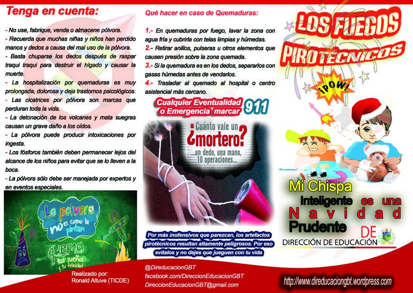 Prof Orlando Contreras Los Fuegos Pirotecnicos