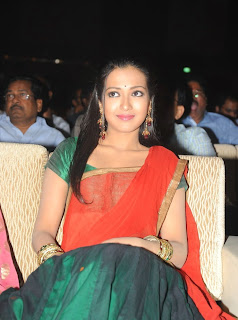 Catherine Tresa in Saree stills from audio launch event