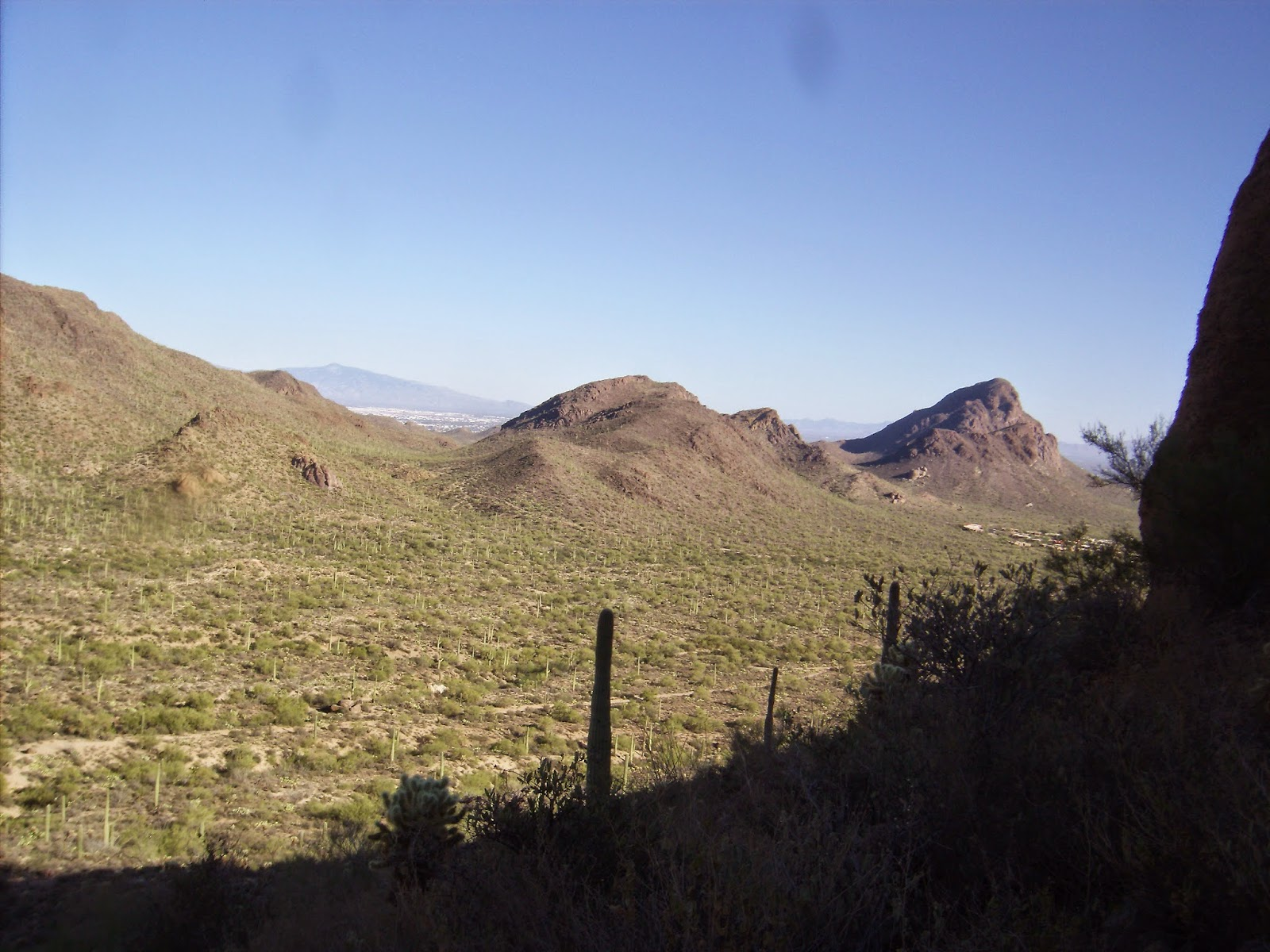 views while hiking in tucson mountain park