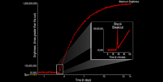 The diagram illustrates the brightness of a supernova event relative to the sun as it unfolds. For the first time, a supernova shockwave has been observed in the optical wavelength or visible light as it reaches the surface of the star. This early flash of light is called a shock breakout. The explosive death of this star, called KSN 2011d, as it reaches its maximum brightness takes 14 days. The shock breakout itself lasts only about 20 minutes, so catching the flash of energy is an investigative milestone for astronomers. The unceasing gaze of NASA's Kepler space telescope allowed astronomers to see, at last, this early moment as the star blows itself to bits. Supernovae like these — known as Type II — begin when the internal furnace of a star runs out of nuclear fuel causing its core to collapse as gravity takes over. This type of star is called a red supergiant star and it is 20,000 times brighter than our sun. As the supergiant star goes supernova, the energy traveling from the core reaches the surfaces with a burst of light that is 130,000,000 times brighter than the sun. The star continues to explode and grow reaching maximum brightness that is about 1,000,000,000 times brighter than the sun. Credits: NASA Ames/W. Stenzel