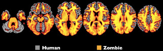 Timothy Verstynen and Bradley Voytek - Zombie Research Society zombie brain