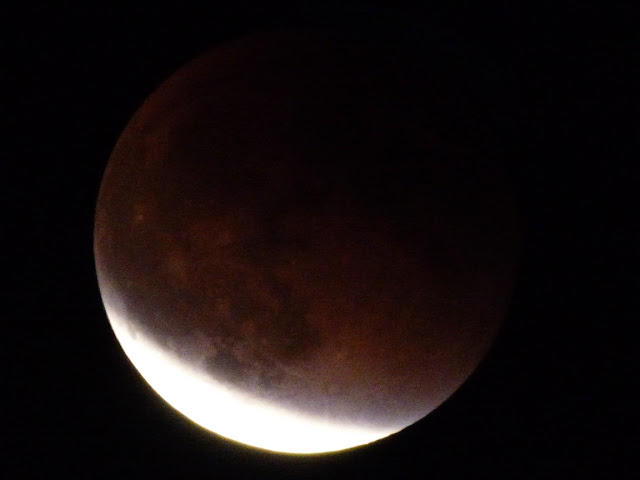 blood moon tonight time est - photo #17