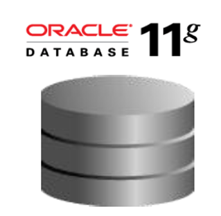 oracle database 11 g Docker run -d -p 8080:8080 -p 1521:1521 -v /my/oracle/data:/u01/app/oracle sath89/oracle-ee-11g run with custom dbca_total_memory (in mb): docker run -d -p 8080:8080 -p 1521:1521 -v /my/oracle/data:/u01/app/oracle -e dbca_total_memory=1024 sath89/oracle-11g connect database with following setting.