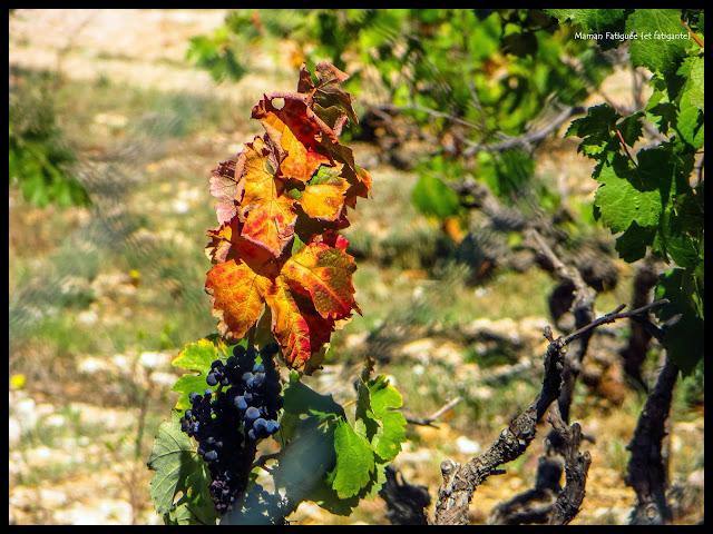 bonheur d'automne