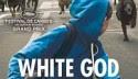 WHITE GOD (2014) FILM ONLINE SUBTITRAT