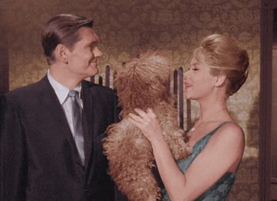 Bewitched - Season 1 Episode 03: It Shouldn't Happen to a Dog