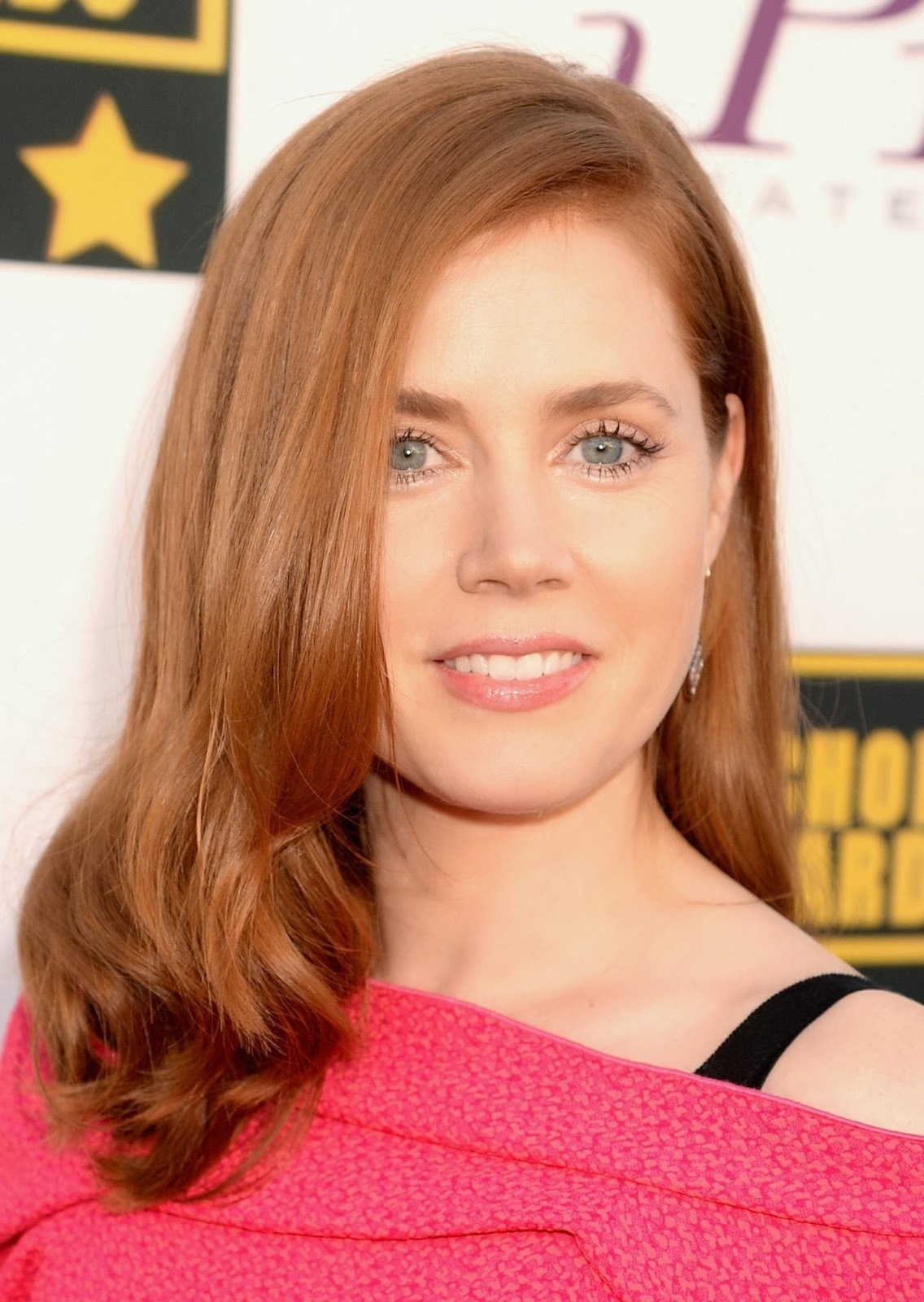 Amy Adams The Best Actress Movie American Hustle - SHINER ...
