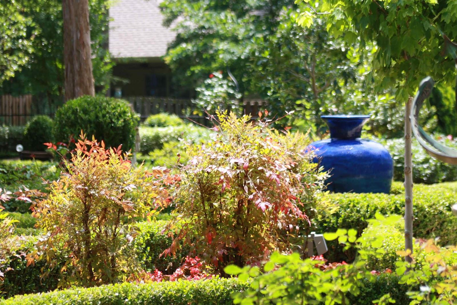 Roses and Other Gardening Joys: Grassless Grandeur ... on Grassless Garden Ideas  id=77221