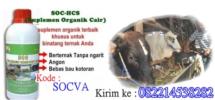 SOC-HCS (Suplemen Organik Cair)