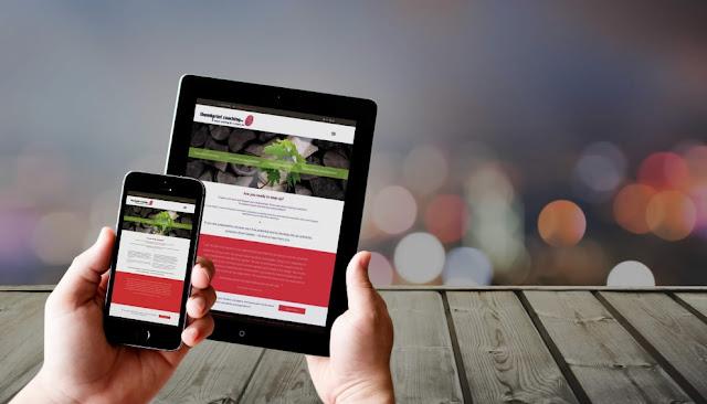 jasa pembuatan website profesional terpercaya