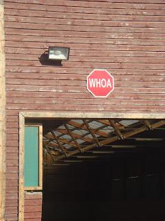 El Bronco, Riitta Reissaa, Unkari, lännenratsastus, Horsexplore