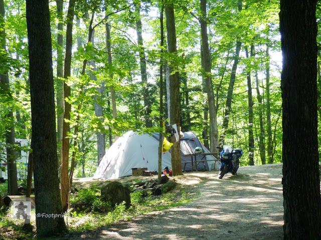 Der Park hat zwei Campingplaetze, deren Plaetze im Schatten unter den Bauemen liegen