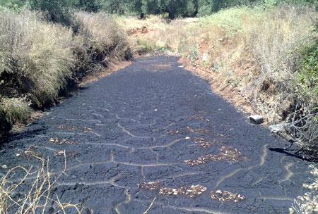 Για λίπανση των ελαιώνων τα απόβλητα των ελαιουργείων