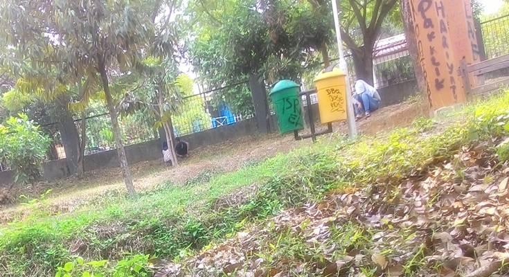 Remaja di taman