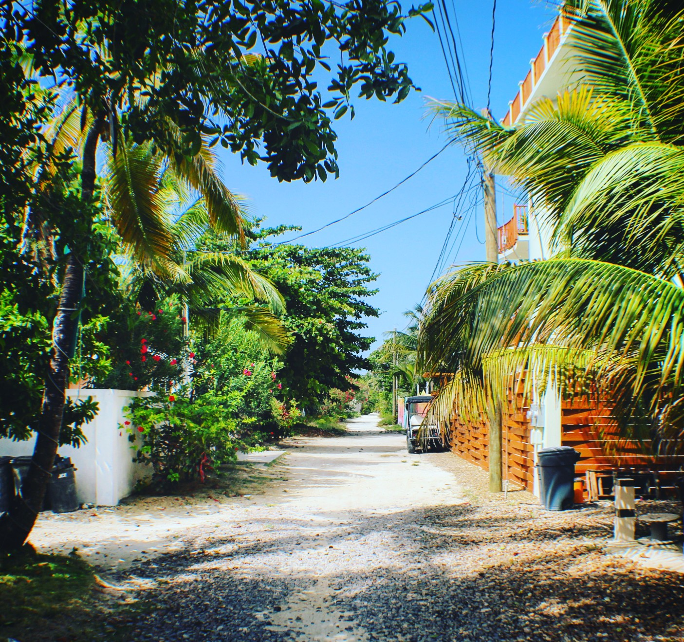 "Belize Beaches: Spotlight On The ""Tres Cocos"" Neighborhood Of Ambergris"