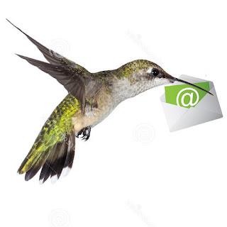 http://us6.campaign-archive2.com/?u=b827291a96&id=aab29dd423