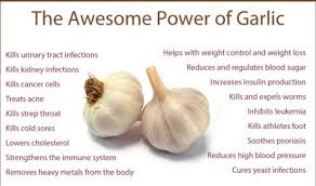 how to use garlic, when garlic should use.
